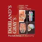 Pocket Atlas of Anatomy TR icon