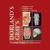 Download Pocket Atlas of Anatomy TR APK to PC