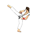 Final Karate icon