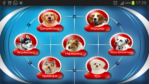 About Dog Breeds