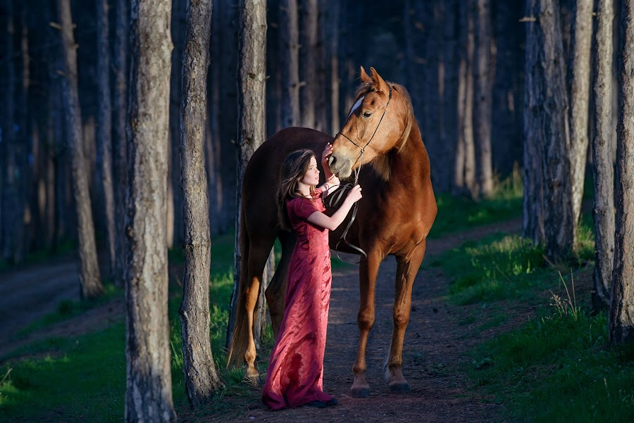 Girl and the horse in the woods by Tamara Didenko - Animals Horses ( princess, girl, horse, portrait,  )