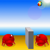 Volleyball crab