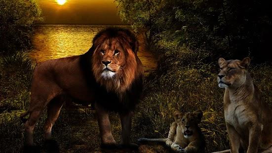 獅子動態壁紙