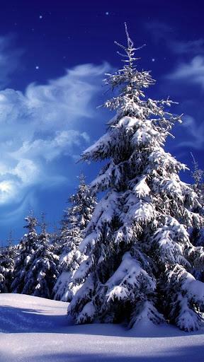 Winter landscape water effect