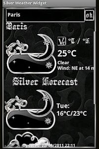 Silver  Weather Widget screenshot 3