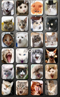 Screenshot of Cat and Kitten Fun Meow Sounds