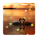 Ripple sunset  free icon