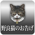 Revelation of feral cats logo