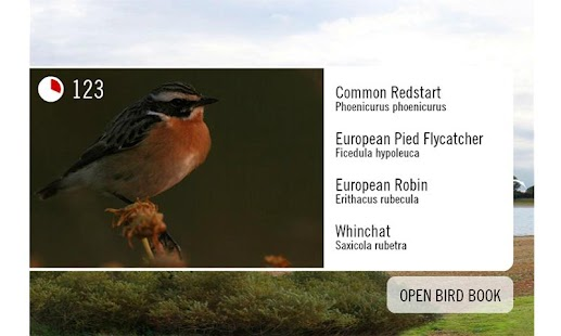 Birdinggame- screenshot thumbnail
