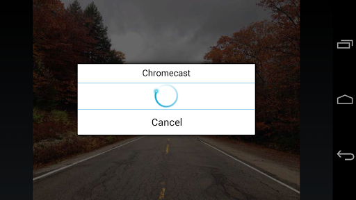 ES Chromecast plugin 1.0 screenshots 4