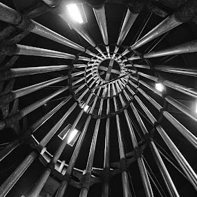 Devil's staircase by Matevz Skerget - Buildings & Architecture Other Interior ( b&w, staircase, black &white, spiral )