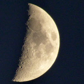 HALF MOON by Larry Moore - Nature Up Close Other Natural Objects (  )