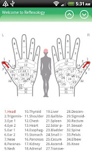 Hand Chart  / for Reflexology screenshot for Android