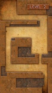 Maze Bomber - Survival