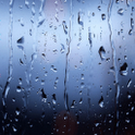 Rains Window Live Wallpaper icon