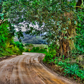 Around the bend by Stephen Fouche - Landscapes Travel