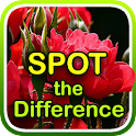 Flowers - Spot the Difference icon