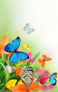 Butterfly Live Wallpaper Screenshot