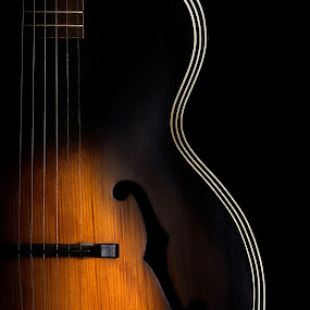 The day the music died by Mike Ritchie - Artistic Objects Musical Instruments ( music, wood, acoustic, guitar, strings, black, object, musical, instrument )