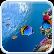 App Ocean Fish Live Wallpaper APK for Windows Phone