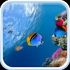 Oкеанов Рыба Живые Обои icon