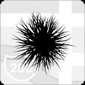 Plag — Information Network