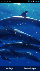 Dolphin Live Wallpaper screenshot 0
