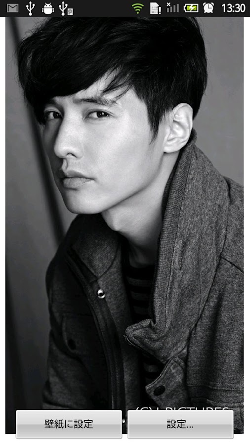 Won Bin Live Wallpaper - screenshot