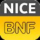 BNF NICE logo