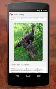Birds of North America - screenshot thumbnail