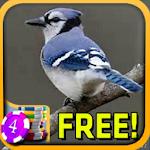 3D Blue Jay Slots - Free