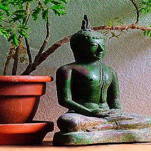 Buddhas Weisheiten Teil 2