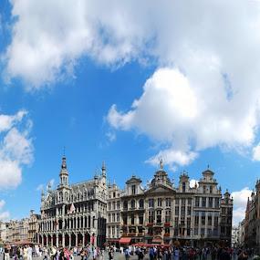Brussels panorama by Sebastian Mezei - Buildings & Architecture Public & Historical ( bruxelles, belgium, marktplaz, brussels, panorama )