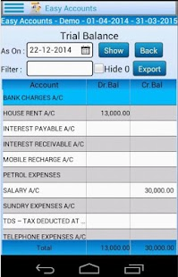 Easy Accounting Lite screenshot