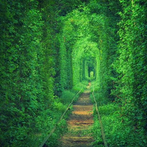 World Most beautiful places 攝影 App LOGO-硬是要APP