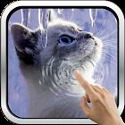 Interactive Kitten icon