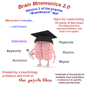 Memorize the Brain Quickly
