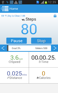 Easy Pedometer- screenshot thumbnail