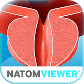 NATOM VIEWER op.03