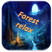 Forest relax. Sounds of nature