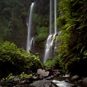 by Lim Darmawan - Nature Up Close Water (  )