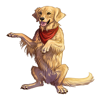 WS: Golden Retriever