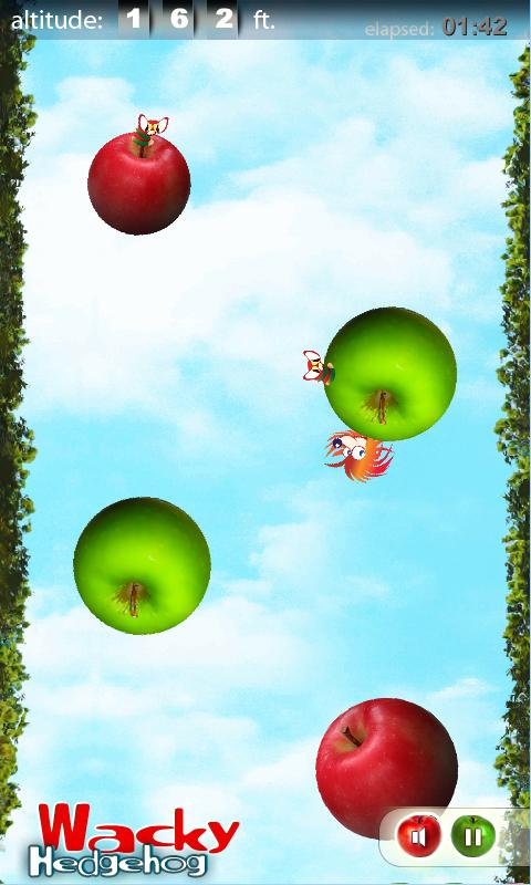 Wacky Hedgehog jump- screenshot