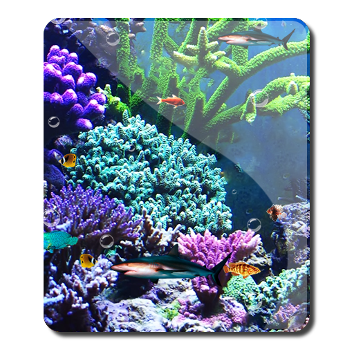 Reef fish crazy tank hd app app for Google fish tank mrdoob