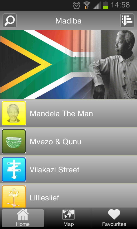 Wild About Madiba- screenshot