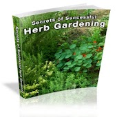 Secrets of Herb Gardening