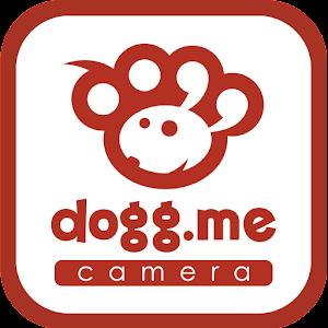 ドッグミーカメラのロゴ