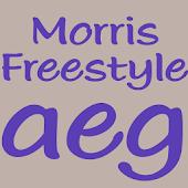 Morris Freestyle FlipFont