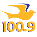 Praise 100.9 – Charlotte logo