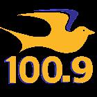 Praise 100.9 - Charlotte icon